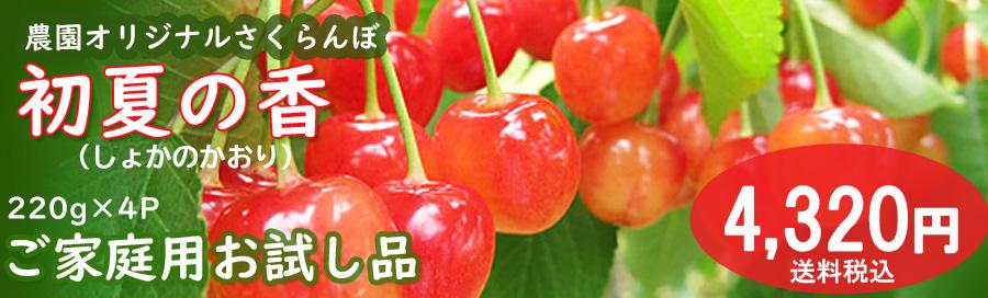 初夏の香4320円